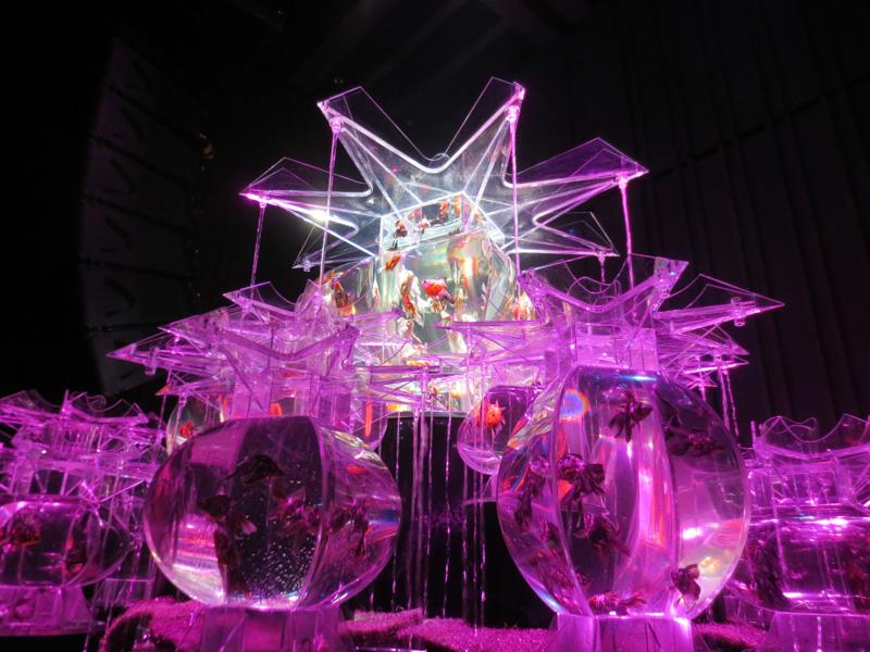 アートアクリアム2013〜江戸・金魚の涼〜の異次元な美しさ具合がとても楽しいので行くべき!